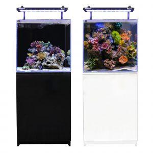 Mini Reef 150