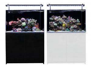 Mini Reef 160