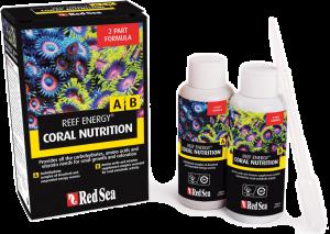 Reef Energy A | B