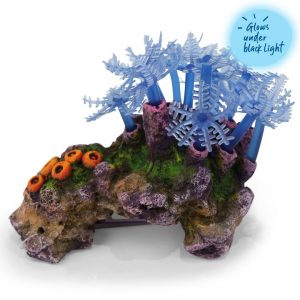 Blue Leaf Coral With Rock – Small
