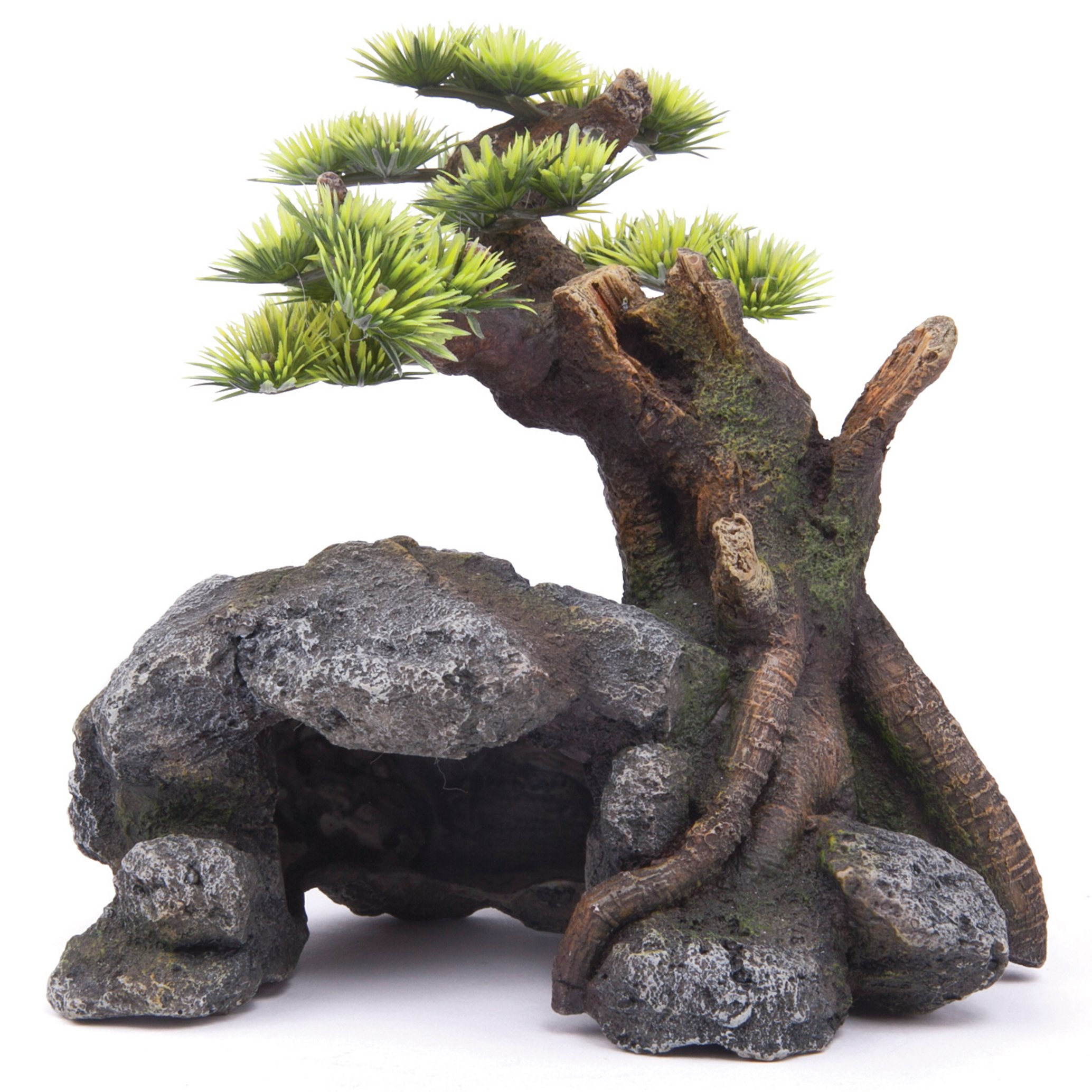 Bonsai With Cave & Plants