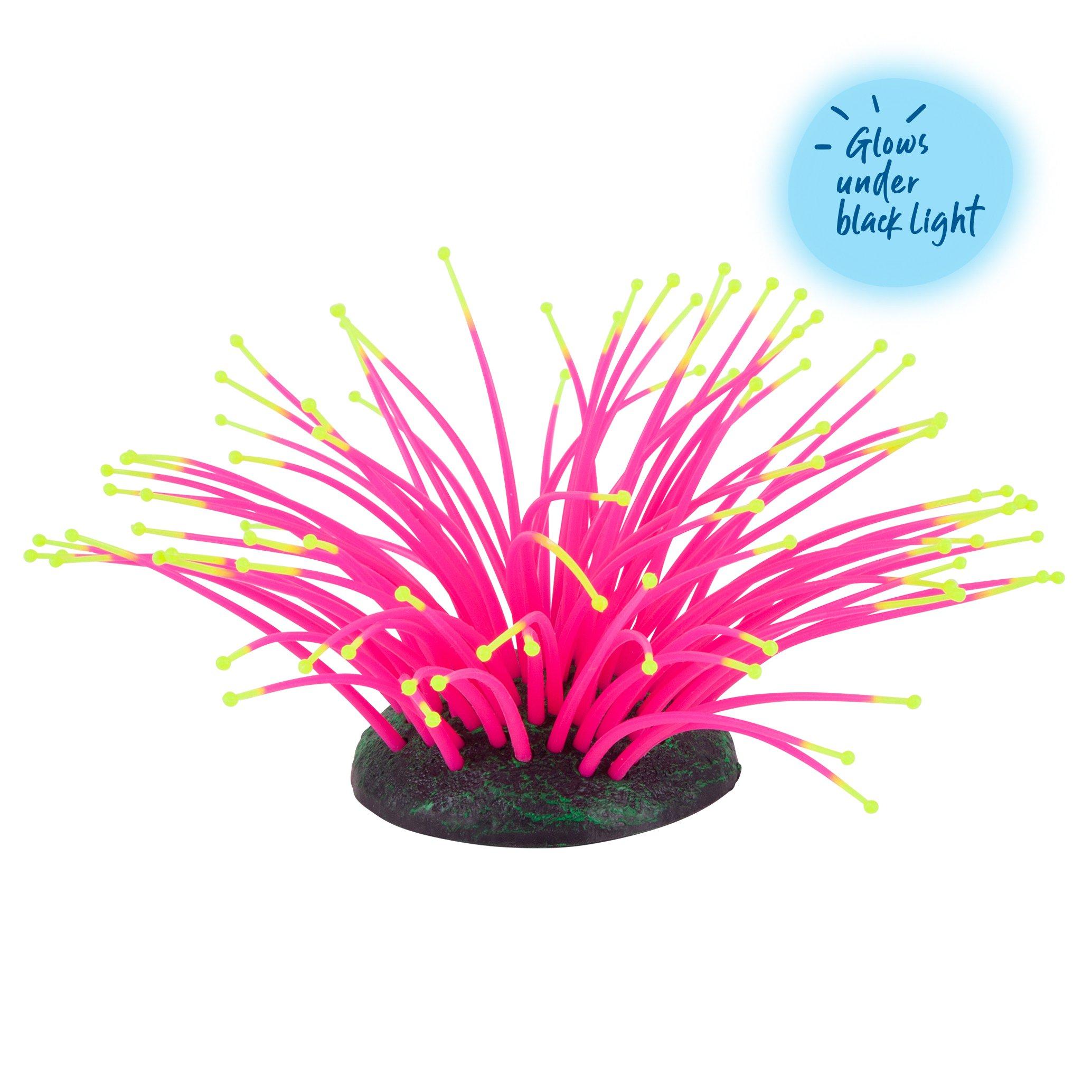 Bubbling Silicone Sea Anemone Pink