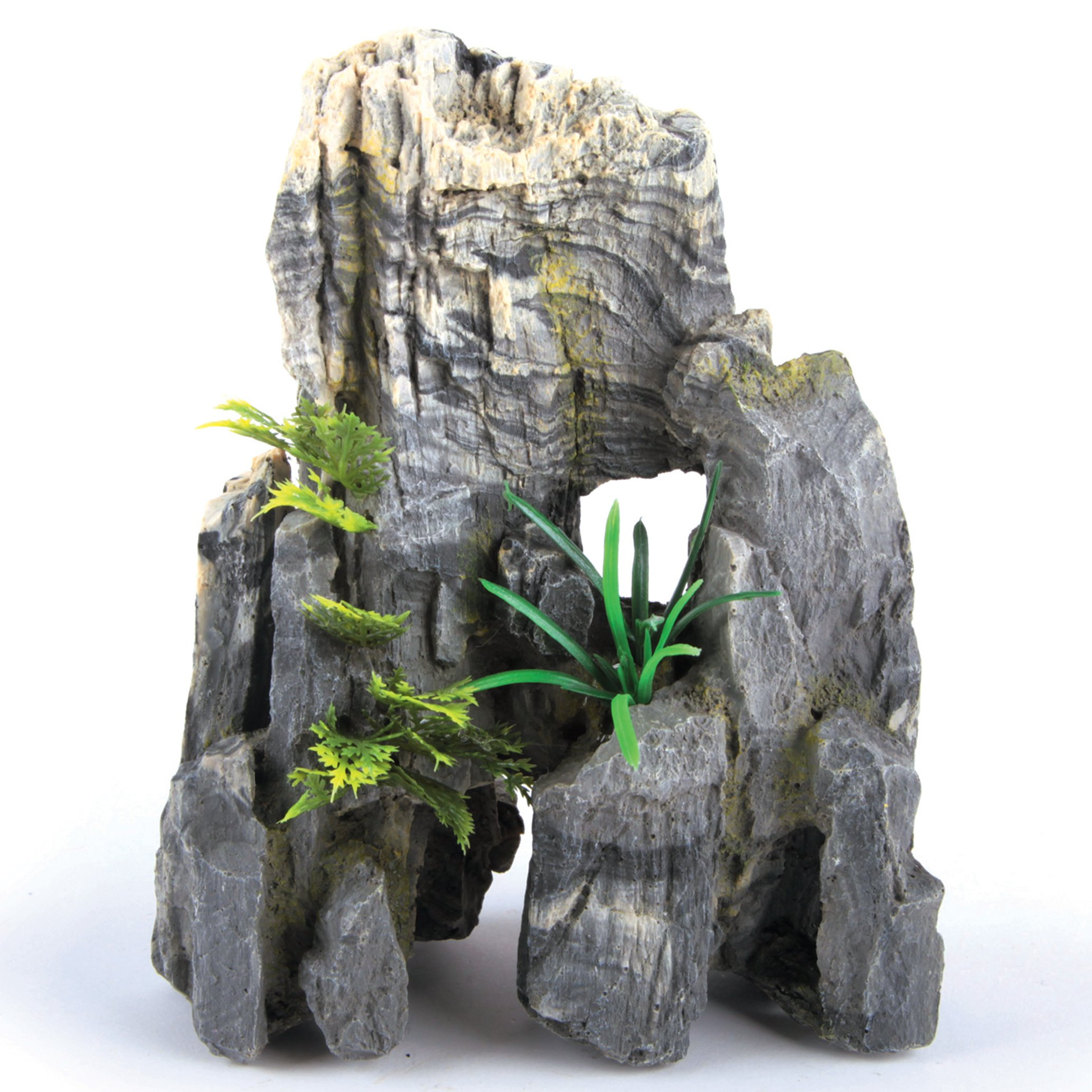 Granite Rock With Plant