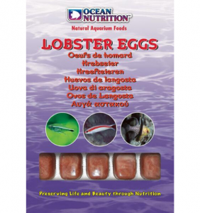 Lobster Eggs